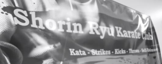 Shorin Ryu Karate Academy